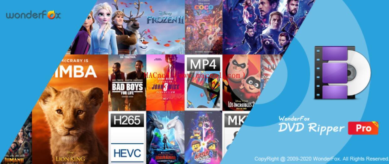 WonderFox DVD Ripper.jpg