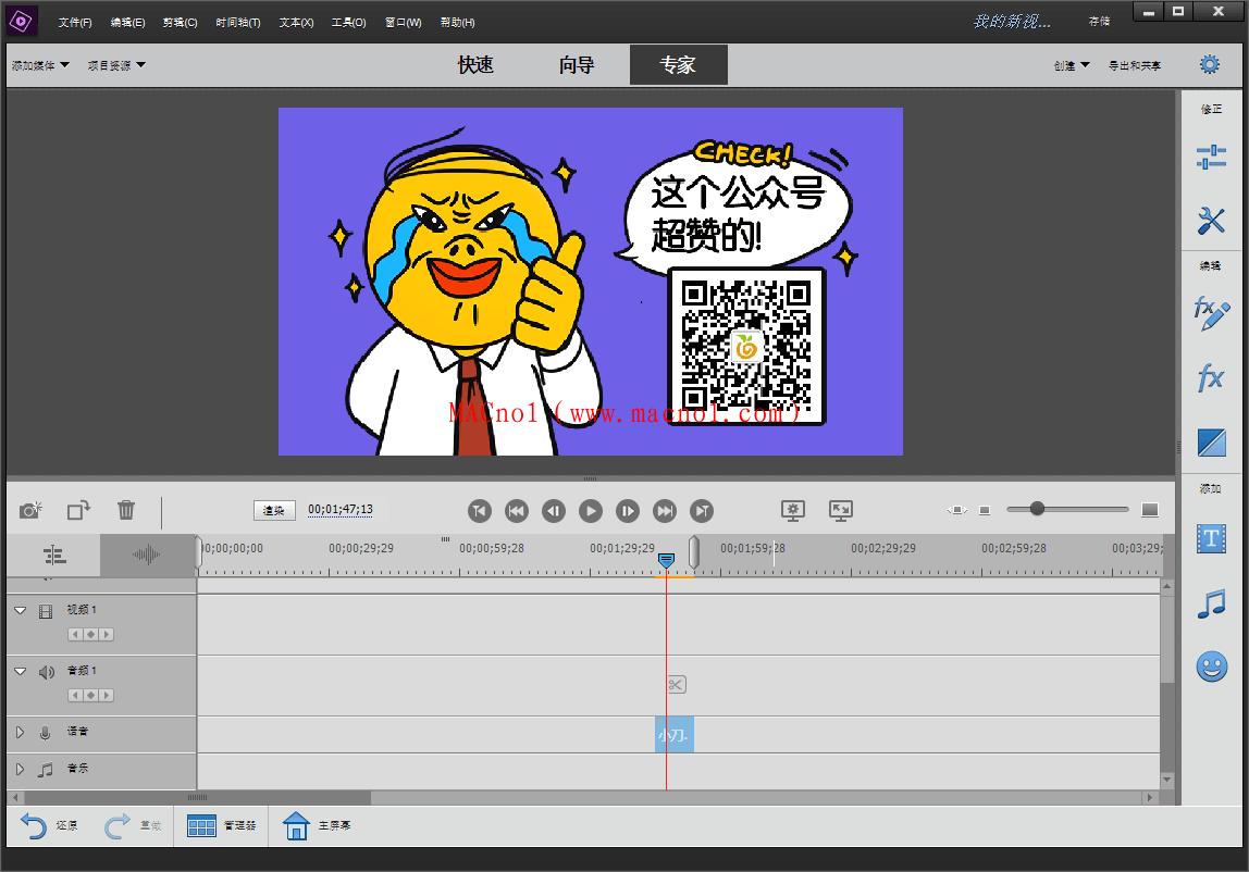 Adobe Premiere Elements.png