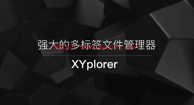 XYPlorer Pro(文件资源管理器) v21.10.0 绿色破解版