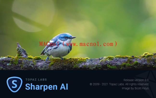 Topaz Sharpen AI(图片锐化软件)v3.0.0 破解版 附注册文件