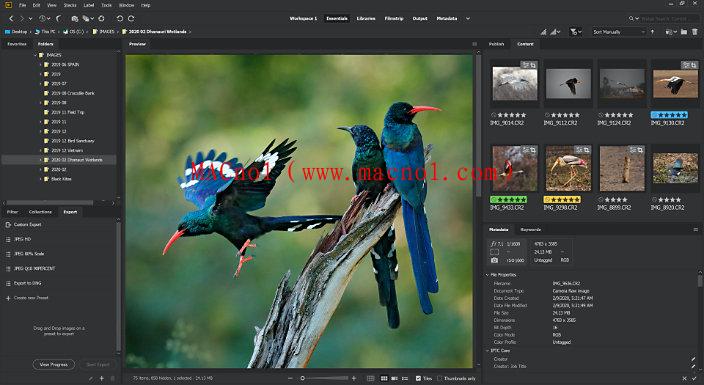 Adobe Bridge 破解版.png